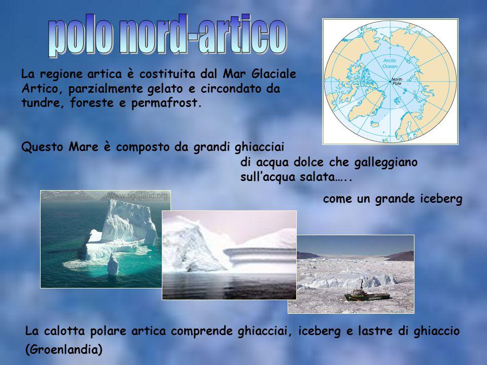 La regione artica è costituita dal Mar Glaciale Artico, parzialmente gelato e circondato da tundre, foreste e permafrost. Questo Mare è composto da gr