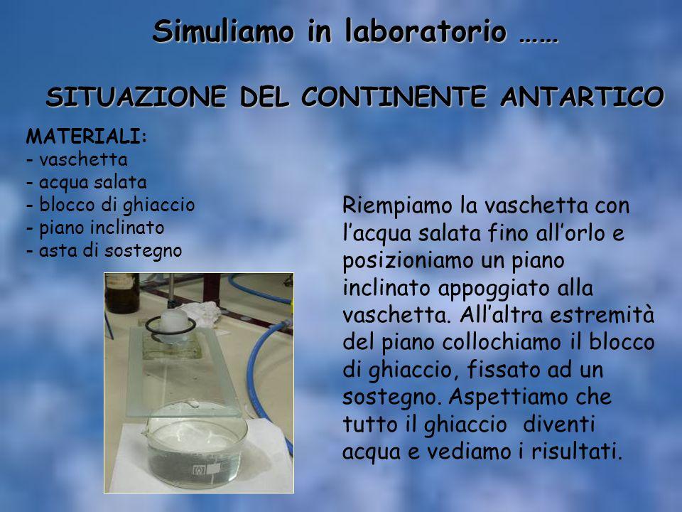 Simuliamo in laboratorio …… SITUAZIONE DEL CONTINENTE ANTARTICO Riempiamo la vaschetta con l'acqua salata fino all'orlo e posizioniamo un piano inclin