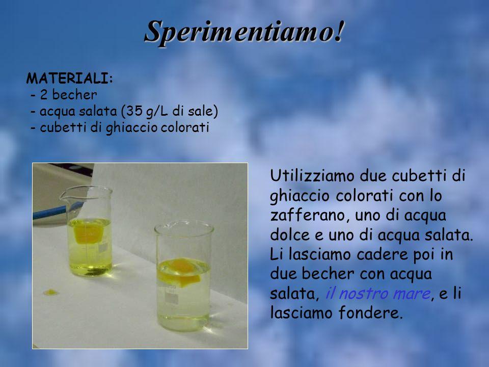 Sperimentiamo! Utilizziamo due cubetti di ghiaccio colorati con lo zafferano, uno di acqua dolce e uno di acqua salata. Li lasciamo cadere poi in due