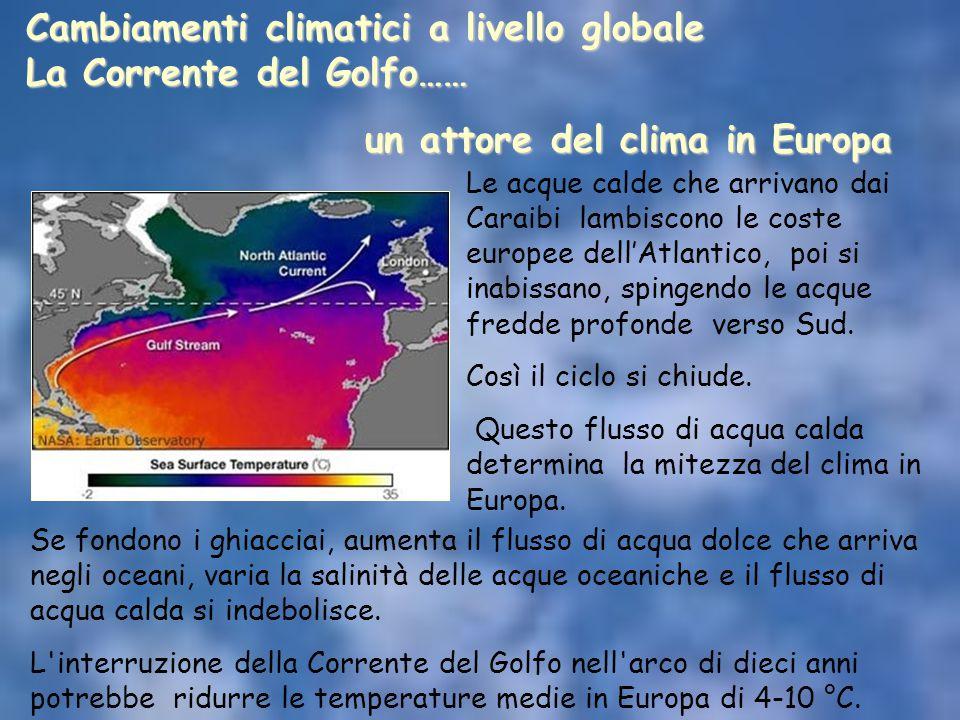 Le acque calde che arrivano dai Caraibi lambiscono le coste europee dell'Atlantico, poi si inabissano, spingendo le acque fredde profonde verso Sud. C