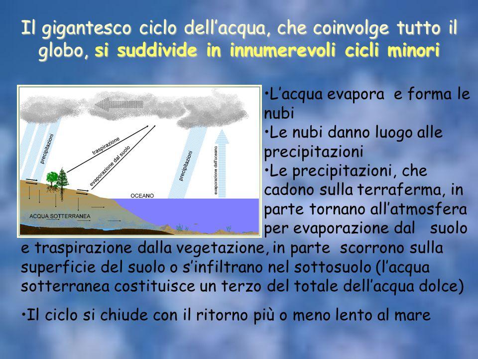 Il gigantesco ciclo dell'acqua, che coinvolge tutto il globo, si suddivide in innumerevoli cicli minori. L'acqua evapora e forma le nubi Le nubi danno
