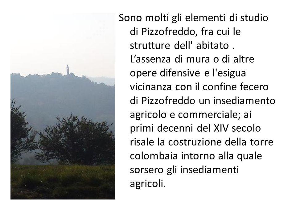 Sono molti gli elementi di studio di Pizzofreddo, fra cui le strutture dell abitato.