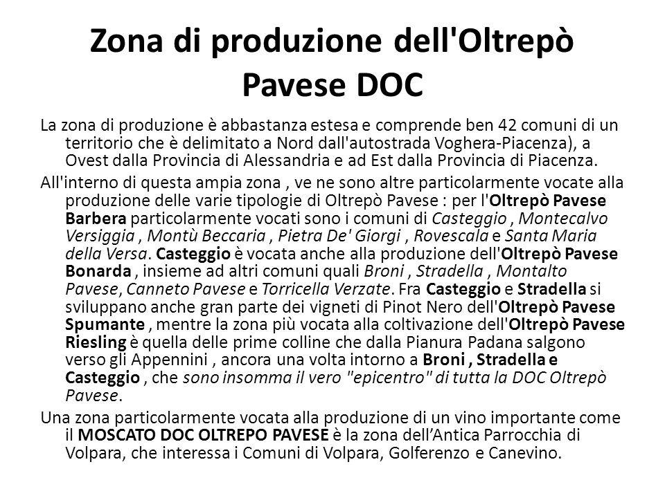 Zona di produzione dell Oltrepò Pavese DOC La zona di produzione è abbastanza estesa e comprende ben 42 comuni di un territorio che è delimitato a Nord dall autostrada Voghera-Piacenza), a Ovest dalla Provincia di Alessandria e ad Est dalla Provincia di Piacenza.