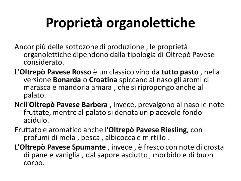 Proprietà organolettiche Ancor più delle sottozone di produzione, le proprietà organolettiche dipendono dalla tipologia di Oltrepò Pavese considerato.