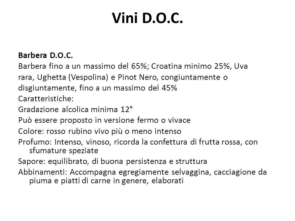 Vini D.O.C.Barbera D.O.C.