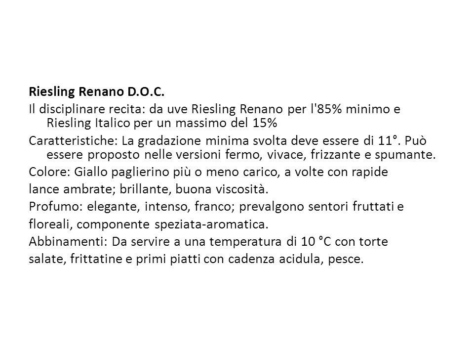 Riesling Renano D.O.C.