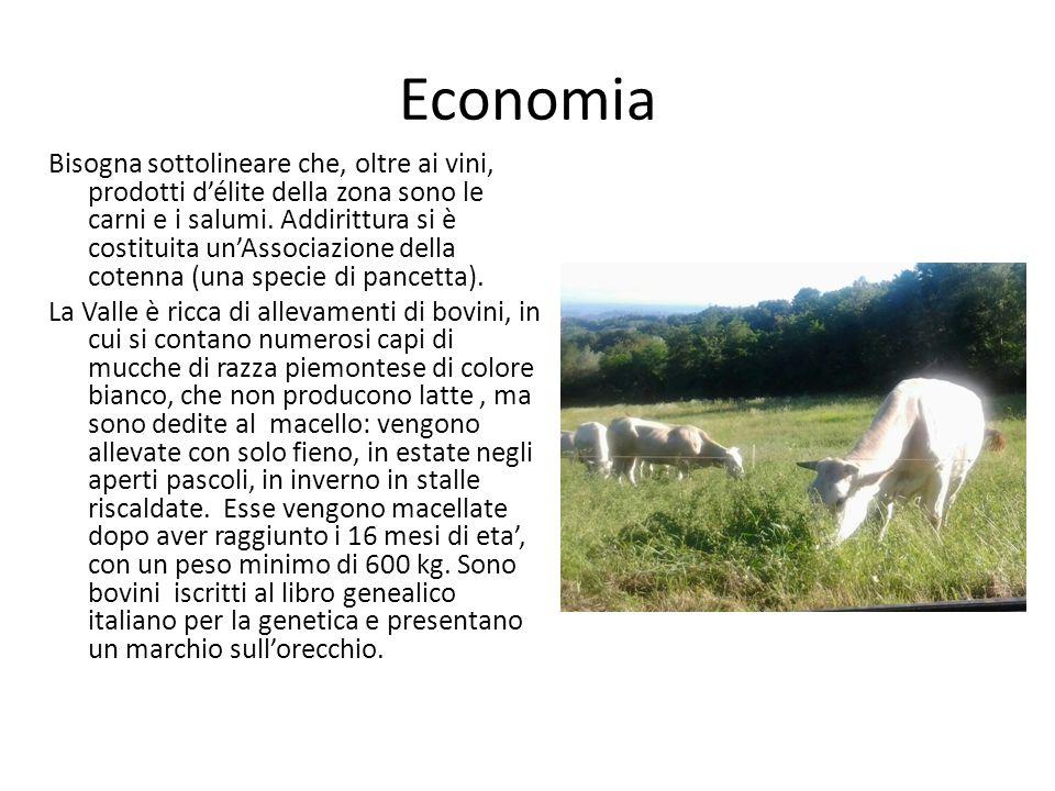 Economia Bisogna sottolineare che, oltre ai vini, prodotti d'élite della zona sono le carni e i salumi.
