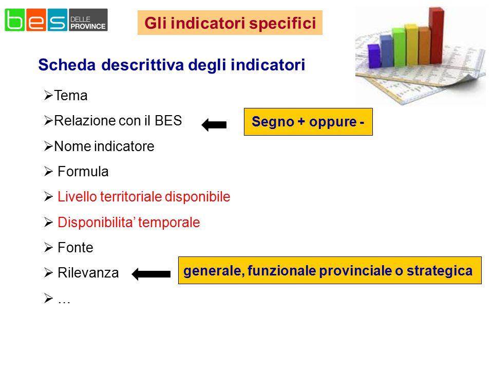 Scheda descrittiva degli indicatori  Tema  Relazione con il BES  Nome indicatore  Formula  Livello territoriale disponibile  Disponibilita' temp