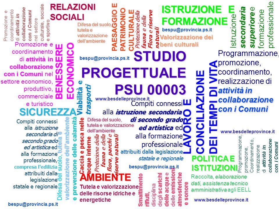 STUDIO PROGETTUALE PSU 00003 Promozione e coordinamento attività in collaborazione di attività in collaborazione con i Comuni con i Comuni nel settore