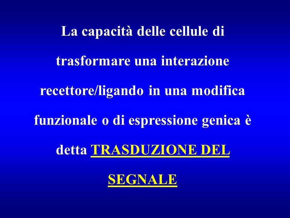 La capacità delle cellule di trasformare una interazione recettore/ligando in una modifica funzionale o di espressione genica è detta TRASDUZIONE DEL