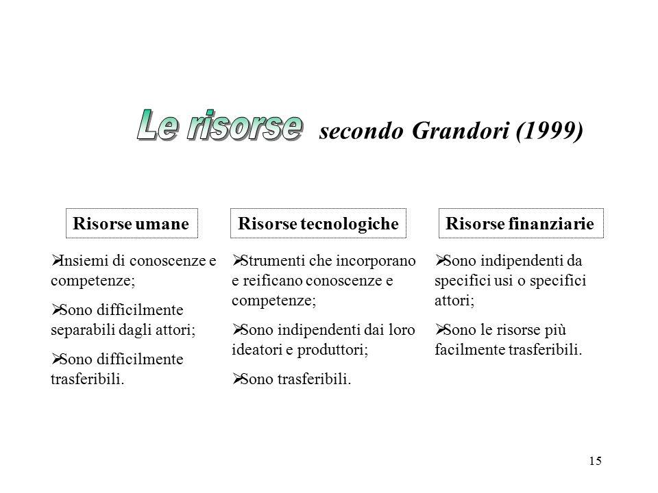 15 secondo Grandori (1999)  Insiemi di conoscenze e competenze;  Sono difficilmente separabili dagli attori;  Sono difficilmente trasferibili. Riso