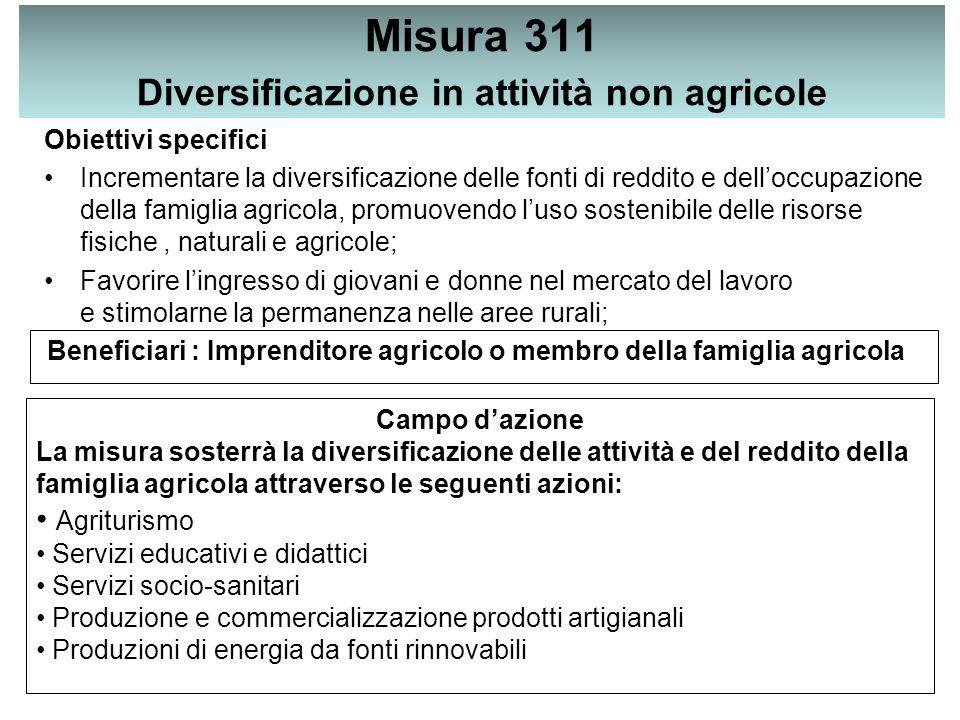 Misura 311 Diversificazione in attività non agricole Obiettivi specifici Incrementare la diversificazione delle fonti di reddito e dell'occupazione de