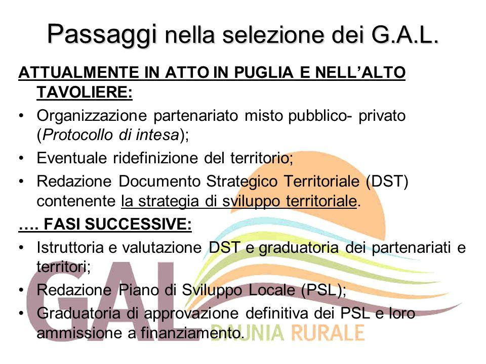 Passaggi nella selezione dei G.A.L. ATTUALMENTE IN ATTO IN PUGLIA E NELL'ALTO TAVOLIERE: Organizzazione partenariato misto pubblico- privato (Protocol