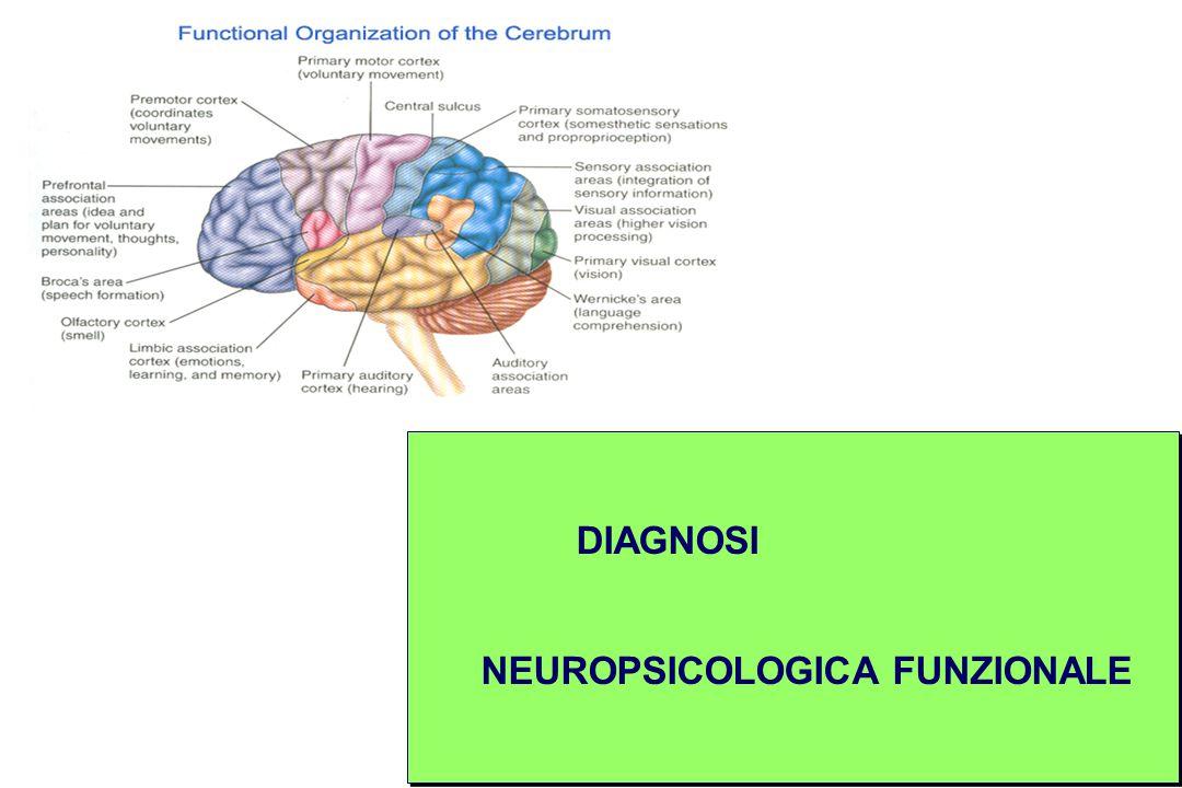 DIAGNOSI NEUROPSICOLOGICA FUNZIONALE DIAGNOSI NEUROPSICOLOGICA FUNZIONALE