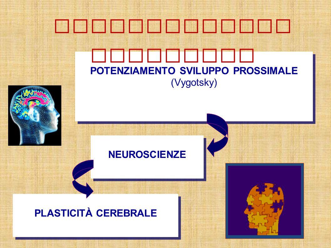 POTENZIAMENTO SVILUPPO PROSSIMALE (Vygotsky) NEUROSCIENZE PLASTICITÀ CEREBRALE Potenziamento cognitivo