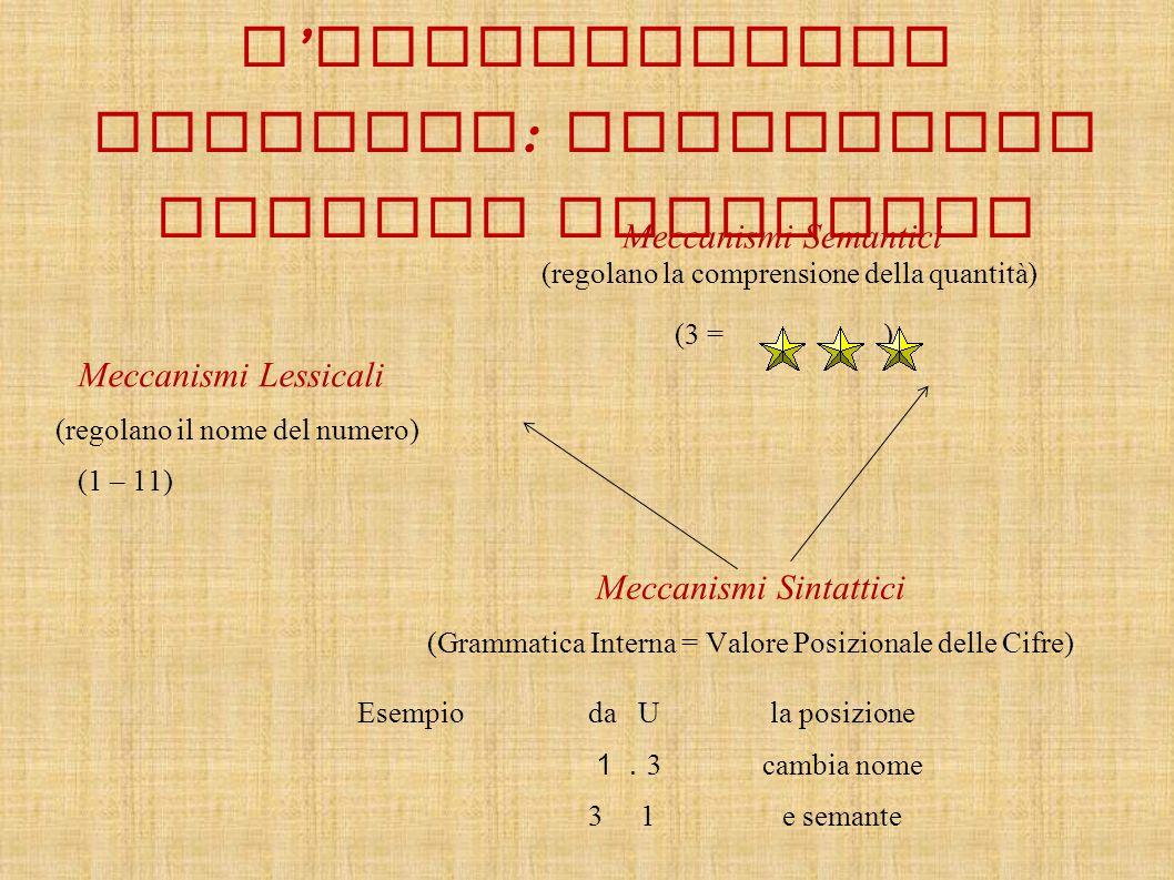 Meccanismi Semantici (regolano la comprensione della quantità) (3 = ) Meccanismi Lessicali (regolano il nome del numero) (1 – 11) Meccanismi Sintattic