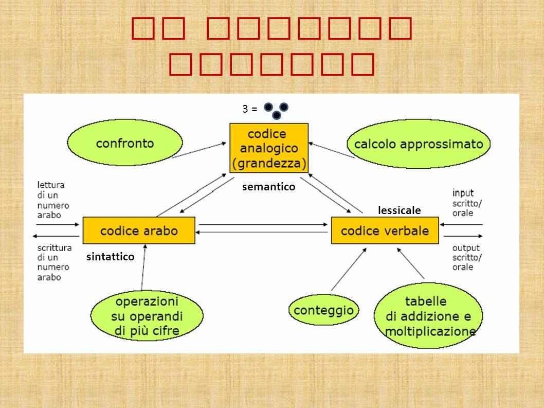 IL MODELLO DEHAENE 3 = semantico lessicale sintattico