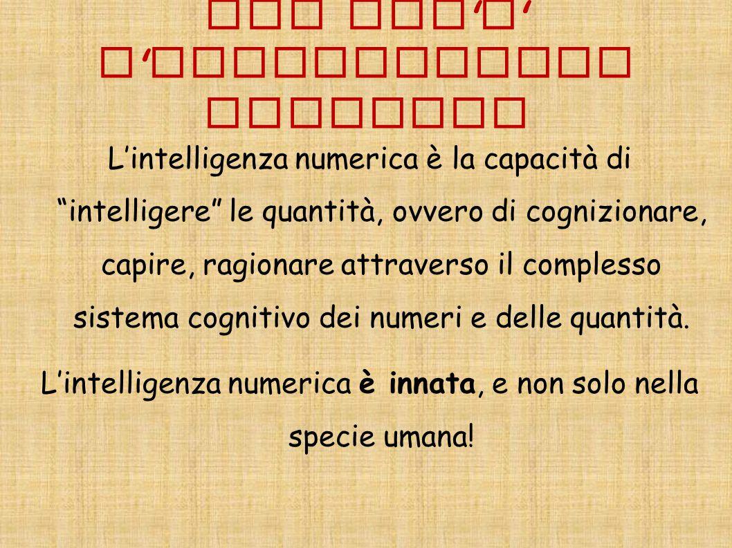 """CHE COS ' E ' L ' INTELLIGENZA NUMERICA L'intelligenza numerica è la capacità di """"intelligere"""" le quantità, ovvero di cognizionare, capire, ragionare"""