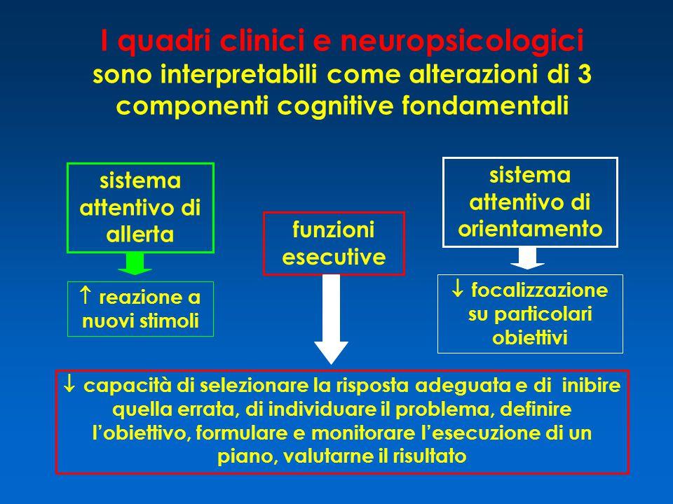 I quadri clinici e neuropsicologici sono interpretabili come alterazioni di 3 componenti cognitive fondamentali sistema attentivo di allerta sistema a