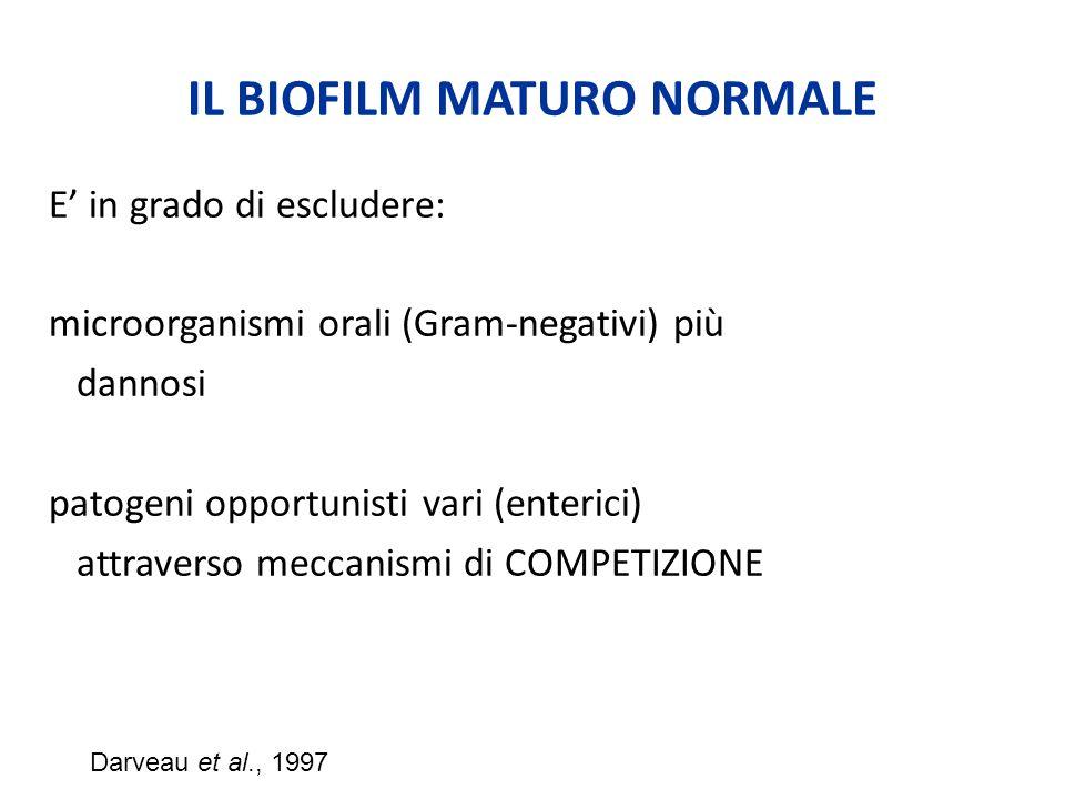 IL BIOFILM MATURO NORMALE E' in grado di escludere: microorganismi orali (Gram-negativi) più dannosi patogeni opportunisti vari (enterici) attraverso