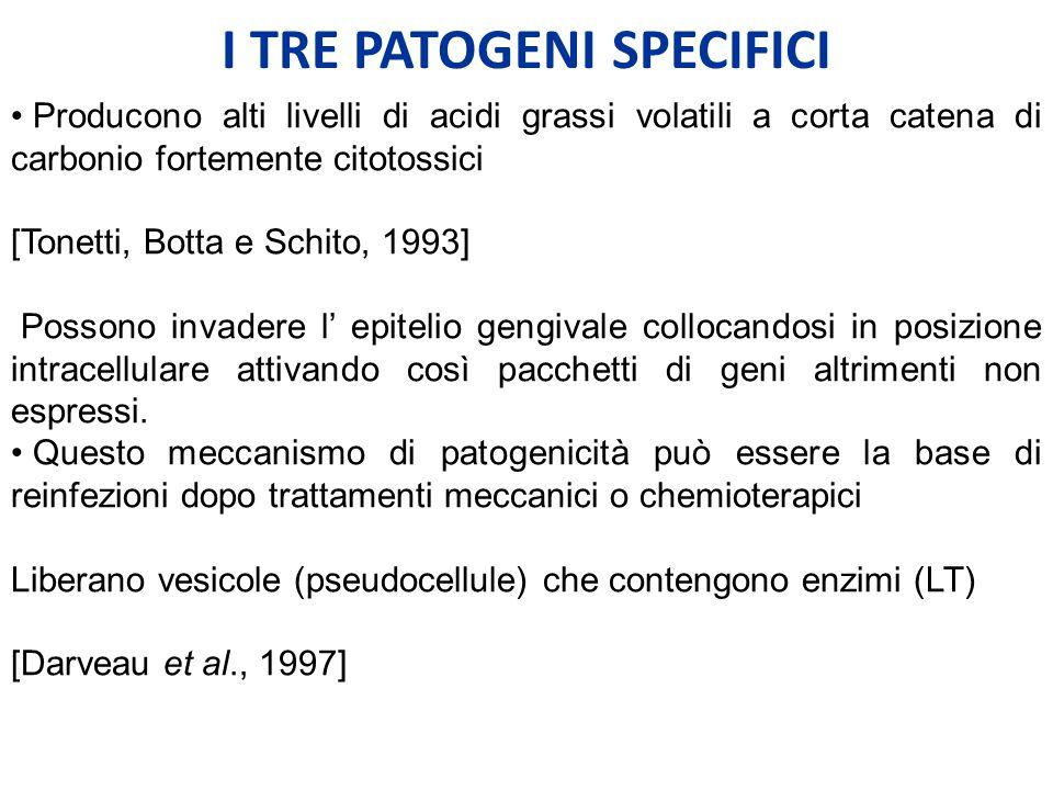 I TRE PATOGENI SPECIFICI Producono alti livelli di acidi grassi volatili a corta catena di carbonio fortemente citotossici [Tonetti, Botta e Schito, 1