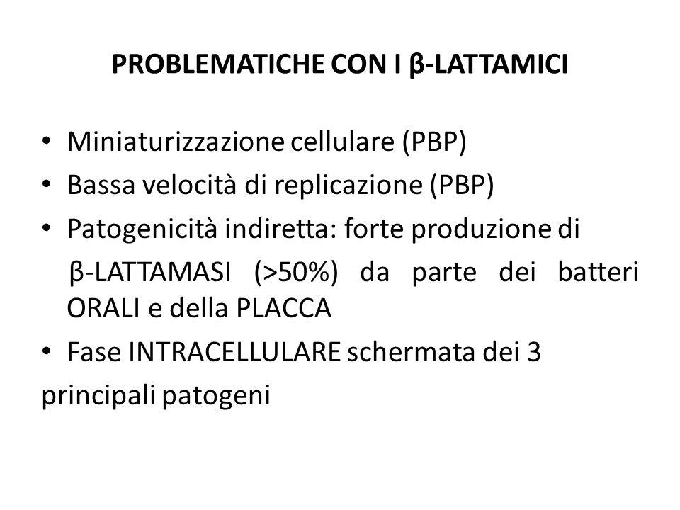 PROBLEMATICHE CON I β-LATTAMICI Miniaturizzazione cellulare (PBP) Bassa velocità di replicazione (PBP) Patogenicità indiretta: forte produzione di β-L