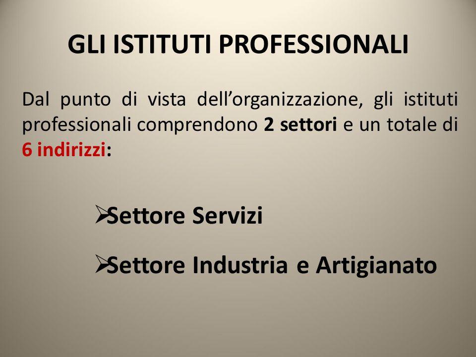 GLI ISTITUTI PROFESSIONALI Dal punto di vista dell'organizzazione, gli istituti professionali comprendono 2 settori e un totale di 6 indirizzi:  Sett