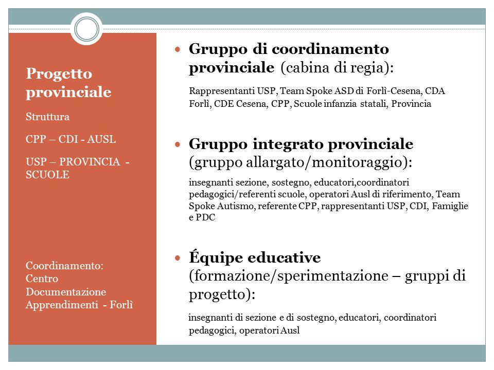 Progetto provinciale Struttura CPP – CDI - AUSL USP – PROVINCIA - SCUOLE Coordinamento: Centro Documentazione Apprendimenti - Forlì Gruppo di coordina