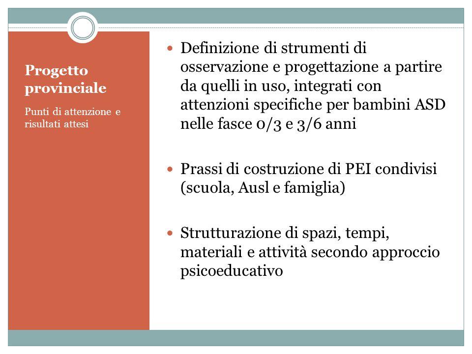 Progetto provinciale Punti di attenzione e risultati attesi Definizione di strumenti di osservazione e progettazione a partire da quelli in uso, integ