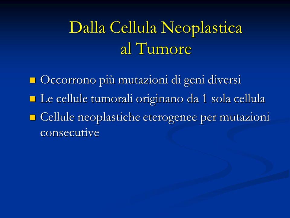 Dalla Cellula Neoplastica al Tumore Occorrono più mutazioni di geni diversi Occorrono più mutazioni di geni diversi Le cellule tumorali originano da 1 sola cellula Le cellule tumorali originano da 1 sola cellula Cellule neoplastiche eterogenee per mutazioni consecutive Cellule neoplastiche eterogenee per mutazioni consecutive