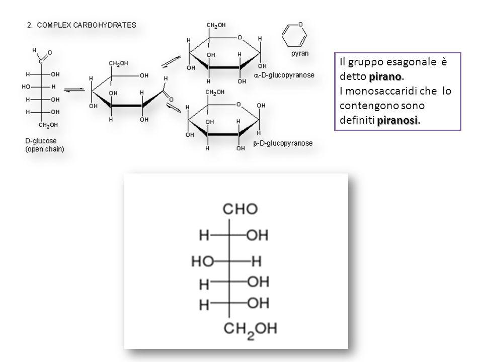 pirano Il gruppo esagonale è detto pirano. piranosi I monosaccaridi che lo contengono sono definiti piranosi.