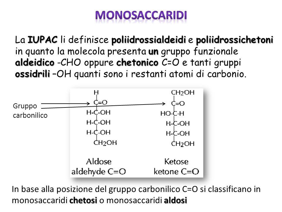 IUPACpoliidrossialdeidipoliidrossichetoni un aldeidicochetonico ossidrili La IUPAC li definisce poliidrossialdeidi e poliidrossichetoni in quanto la m