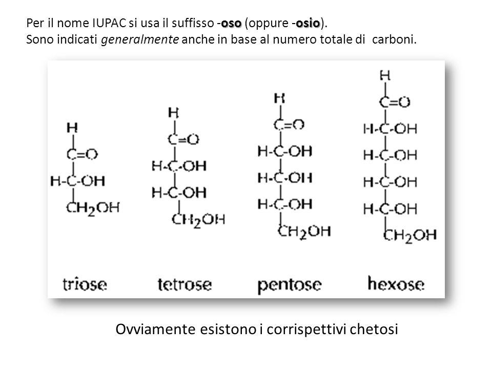 osoosio Per il nome IUPAC si usa il suffisso -oso (oppure -osio). Sono indicati generalmente anche in base al numero totale di carboni. Ovviamente esi