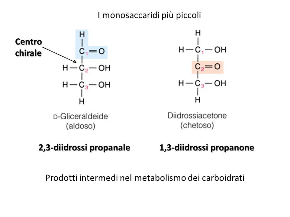 I monosaccaridi più piccoli 2,3-diidrossi propanale 1,3-diidrossi propanone Prodotti intermedi nel metabolismo dei carboidrati Centro chirale