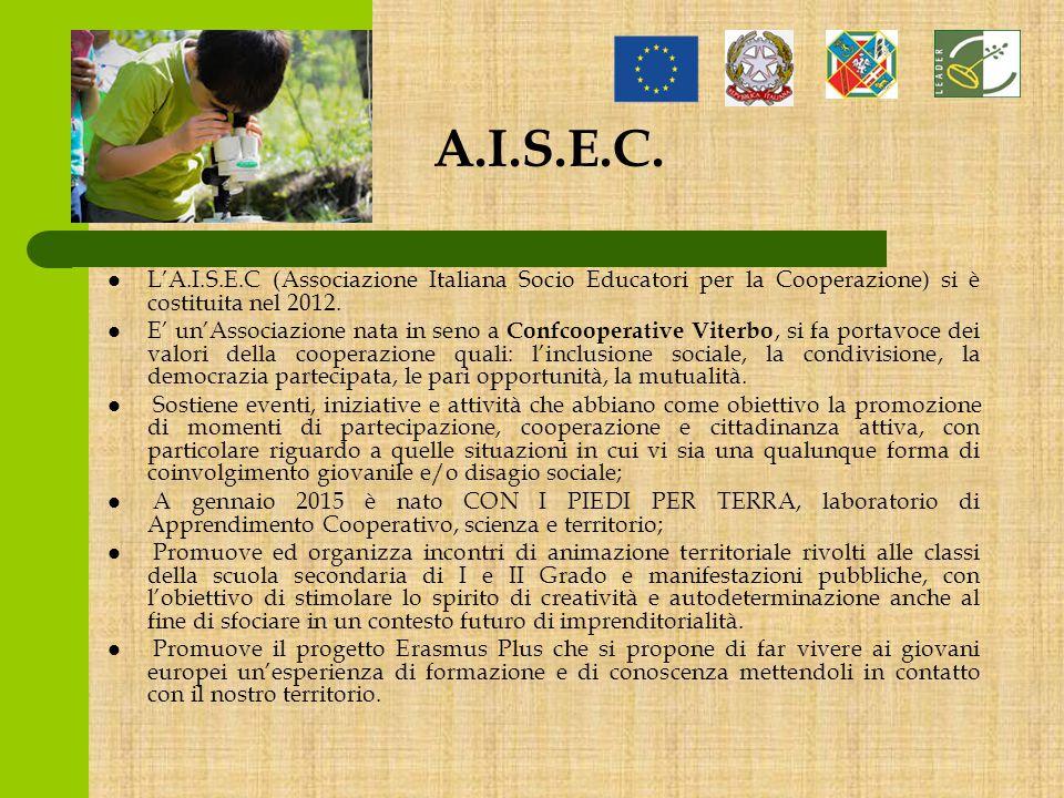 A.I.S.E.C.