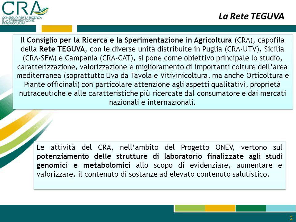 2 Il Consiglio per la Ricerca e la Sperimentazione in Agricoltura (CRA), capofila della Rete TEGUVA, con le diverse unità distribuite in Puglia (CRA‐U