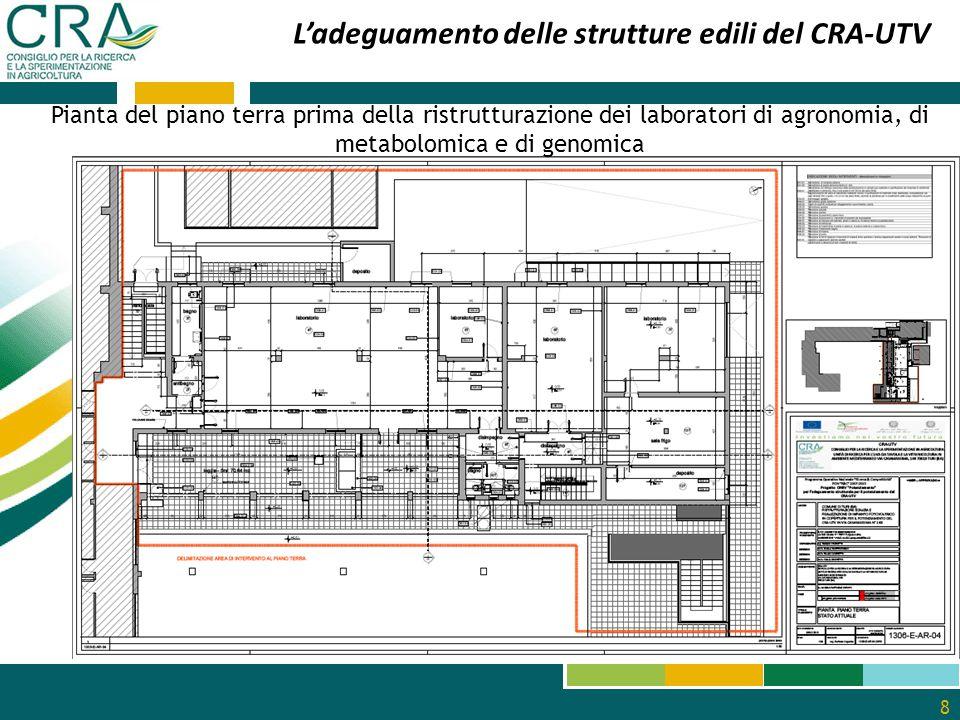 9 L'adeguamento delle strutture edili del CRA-UTV Pianta del piano terra dopo la ristrutturazione dei laboratori: di agronomia, di metabolomica e di genomica