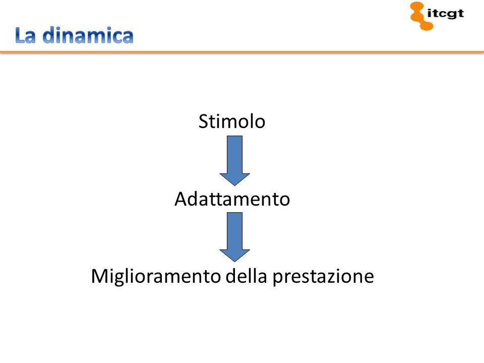 Stimolo Adattamento Miglioramento della prestazione
