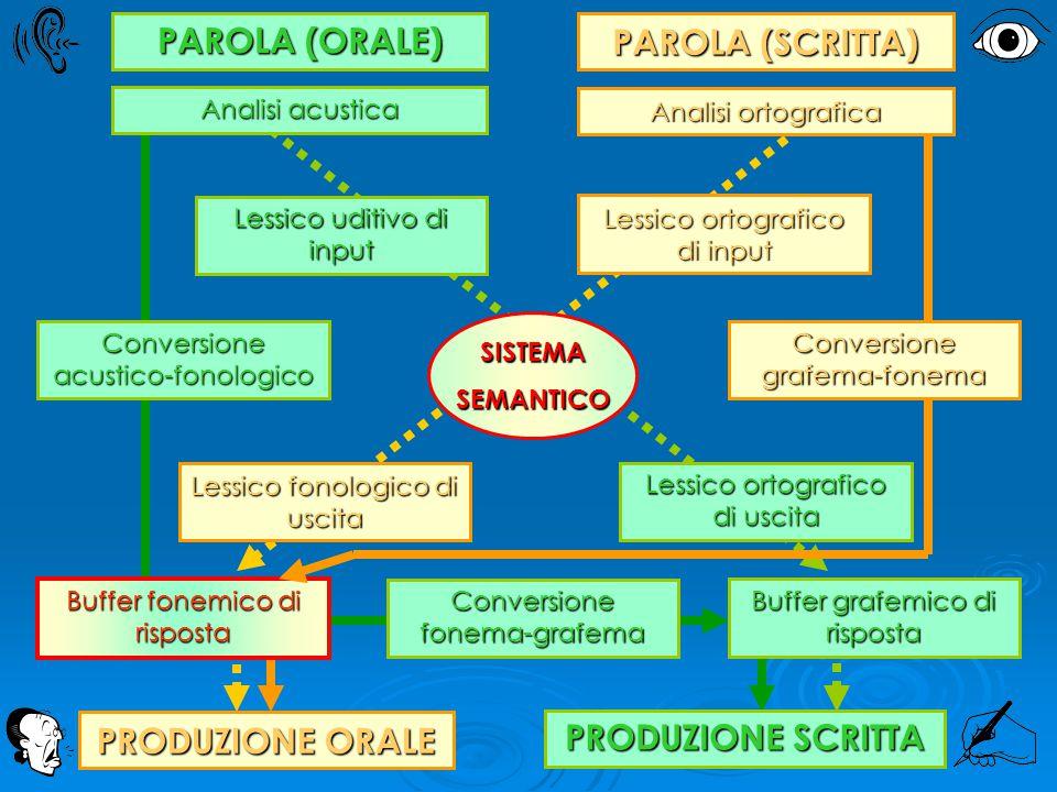 Lessico uditivo di input Conversione fonema-grafema Lessico fonologico di uscita Lessico ortografico di uscita Lessico ortografico di input Buffer gra