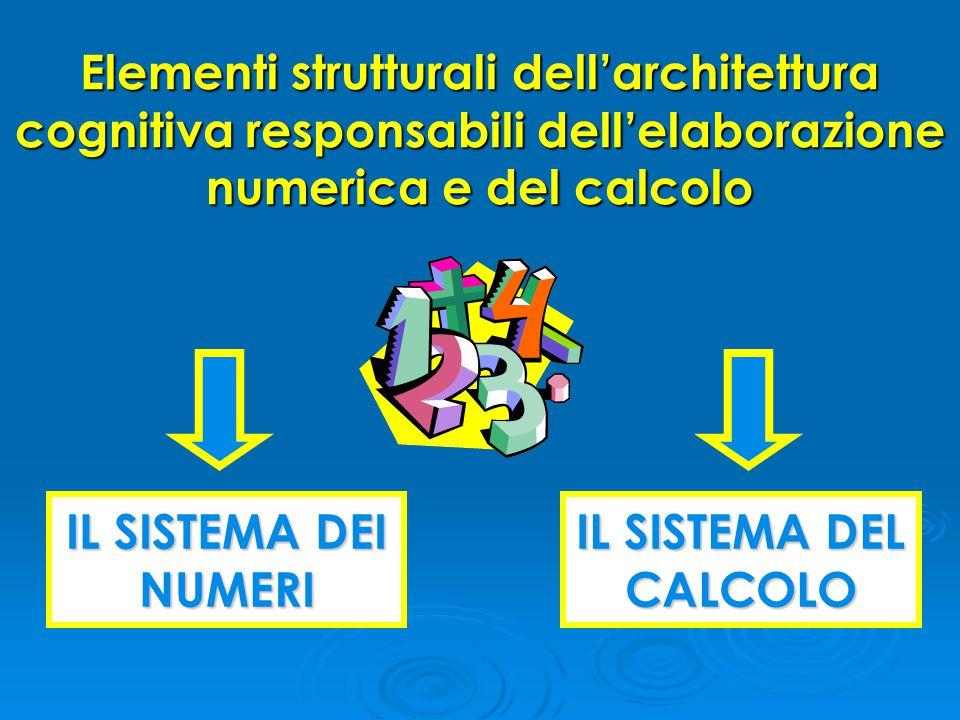 Elementi strutturali dell'architettura cognitiva responsabili dell'elaborazione numerica e del calcolo IL SISTEMA DEI NUMERI IL SISTEMA DEL CALCOLO