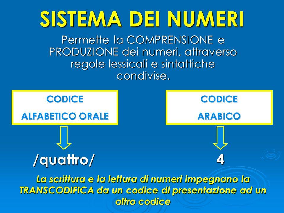 SISTEMA DEI NUMERI Permette la COMPRENSIONE e PRODUZIONE dei numeri, attraverso regole lessicali e sintattiche condivise. CODICE ALFABETICO ORALE /qua