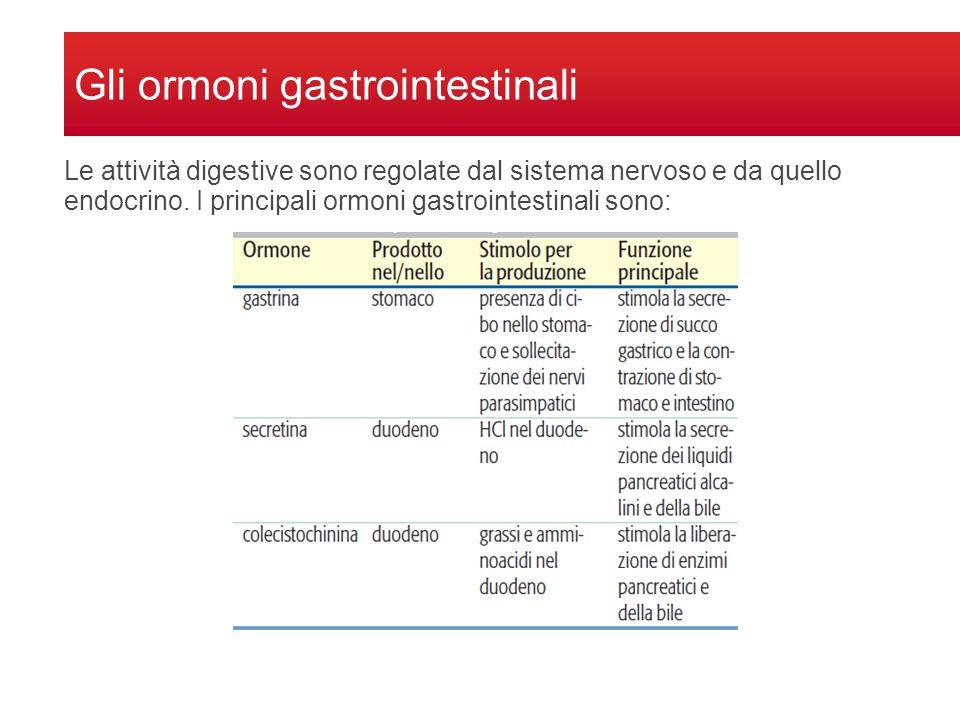 Gli ormoni gastrointestinali Le attività digestive sono regolate dal sistema nervoso e da quello endocrino. I principali ormoni gastrointestinali sono