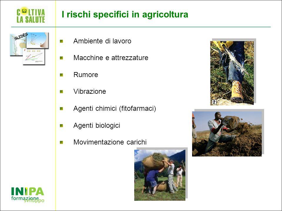 I rischi specifici in agricoltura Ambiente di lavoro Macchine e attrezzature Rumore Vibrazione Agenti chimici (fitofarmaci) Agenti biologici Movimentazione carichi SLIDES