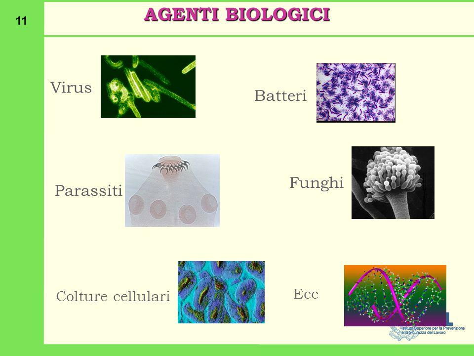 11 Virus Batteri ParassitiFunghi Colture cellulari Ecc AGENTI BIOLOGICI