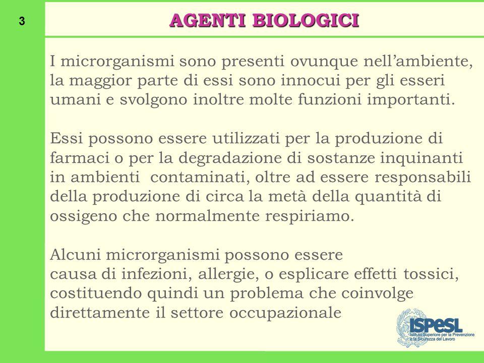 3 AGENTI BIOLOGICI I microrganismi sono presenti ovunque nell'ambiente, la maggior parte di essi sono innocui per gli esseri umani e svolgono inoltre molte funzioni importanti.
