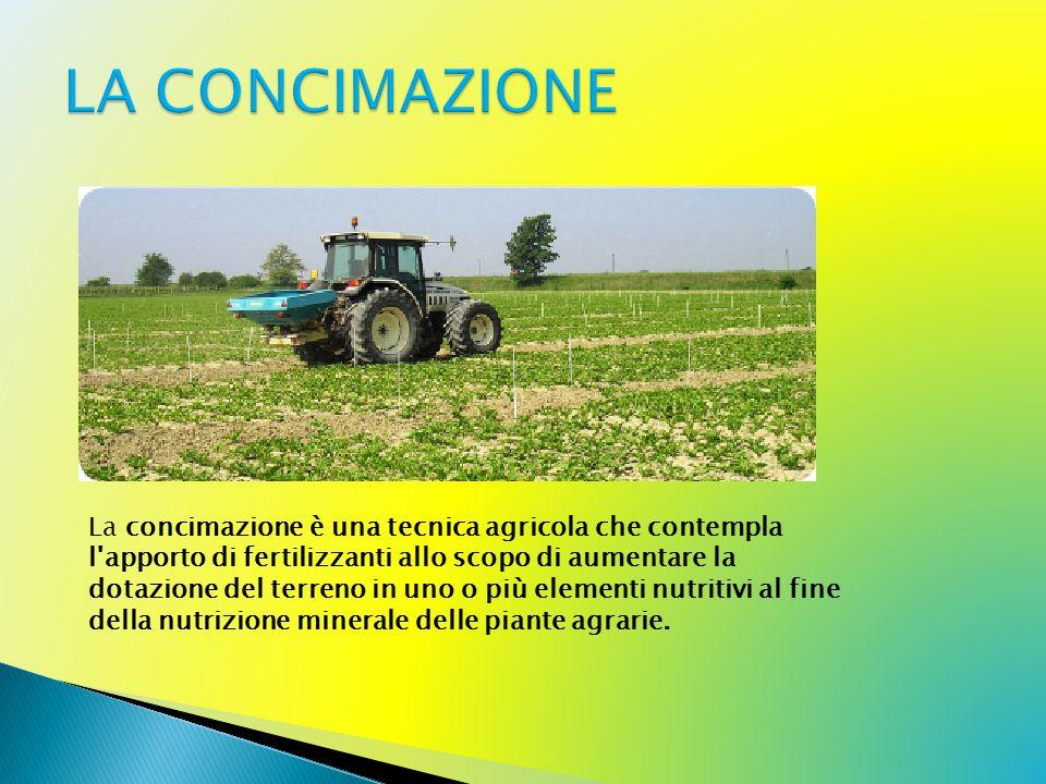 La concimazione è una tecnica agricola che contempla l apporto di fertilizzanti allo scopo di aumentare la dotazione del terreno in uno o più elementi nutritivi al fine della nutrizione minerale delle piante agrarie.