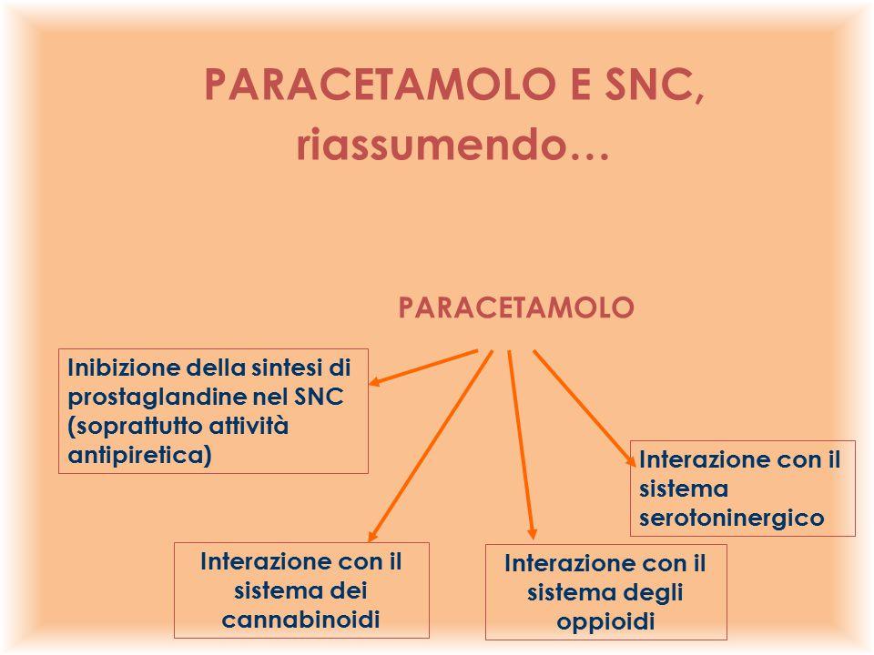 PARACETAMOLO Inibizione della sintesi di prostaglandine nel SNC (soprattutto attività antipiretica) Interazione con il sistema serotoninergico Interaz