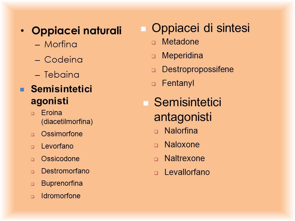 Oppiacei naturali – Morfina – Codeina – Tebaina Semisintetici agonisti  Eroina (diacetilmorfina)  Ossimorfone  Levorfano  Ossicodone  Destromorfa
