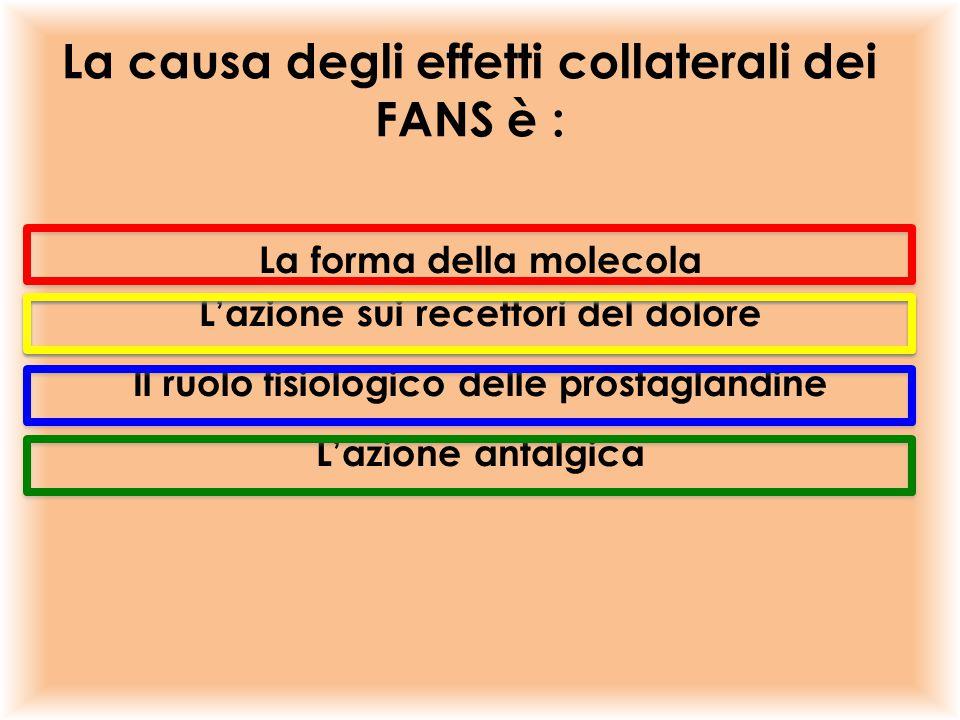 La causa degli effetti collaterali dei FANS è : La forma della molecola L'azione sui recettori del dolore Il ruolo fisiologico delle prostaglandine L'