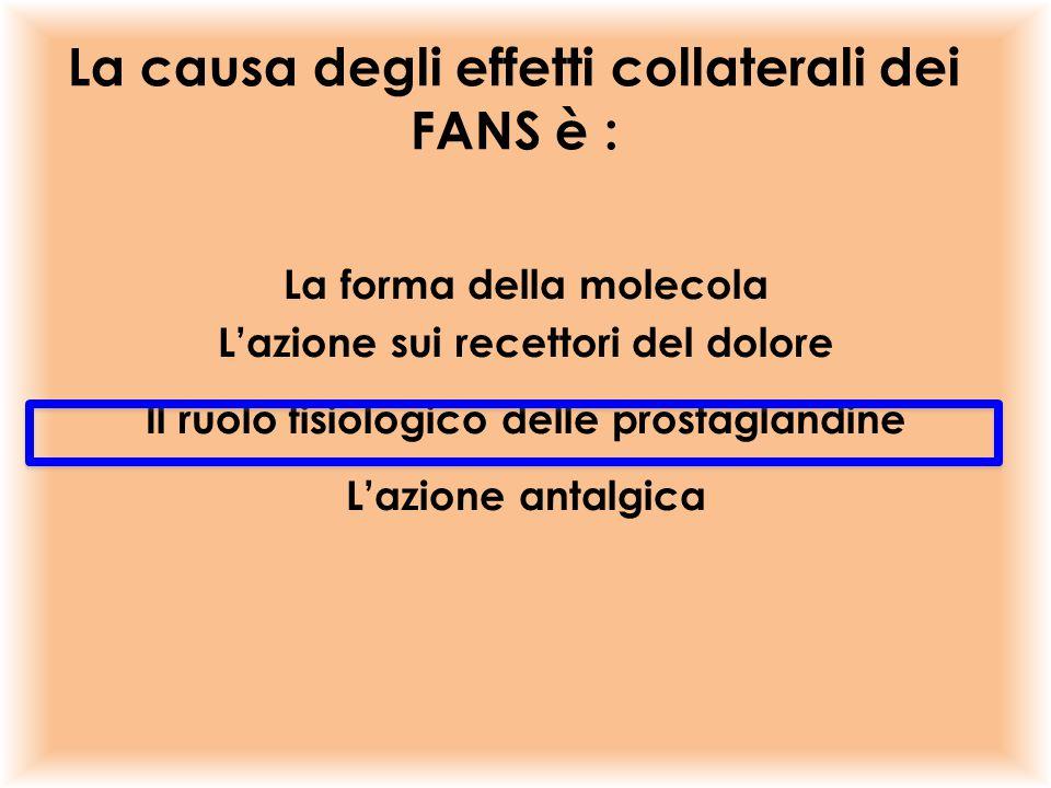 La forma della molecola L'azione sui recettori del dolore Il ruolo fisiologico delle prostaglandine L'azione antalgica La causa degli effetti collater